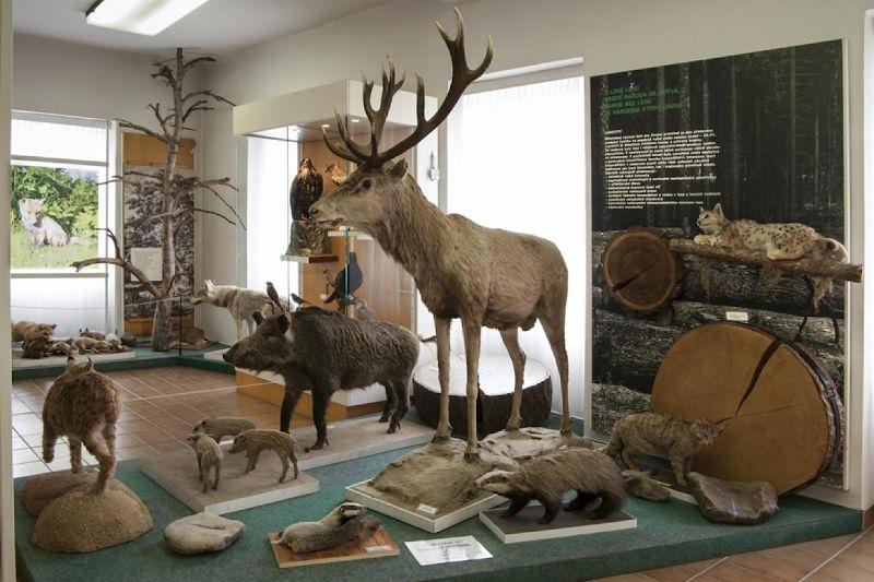 Muzeum Šumavy